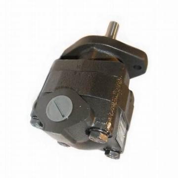 Parker YB1-10 YB1 pompe à palettes